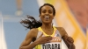 The International Association of Athletics Federations has opened investigation into the coach of the women's one thousand, five hundred-metre world record holder.