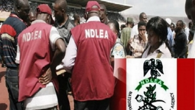 NDLEA decries lack of funding as it disciplines its officials