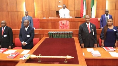 Senate confirms new NDDC boss and 14 others, reject 1