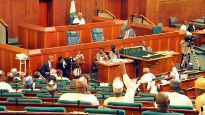 House of reps. orders NERDC to suspend planned electricity bill hike