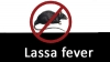 Rivers State-based Journalists and Friends against Disasters and Accidents International has called on the Federal Government to be proactive in tackling the outbreak of Lassa fever.
