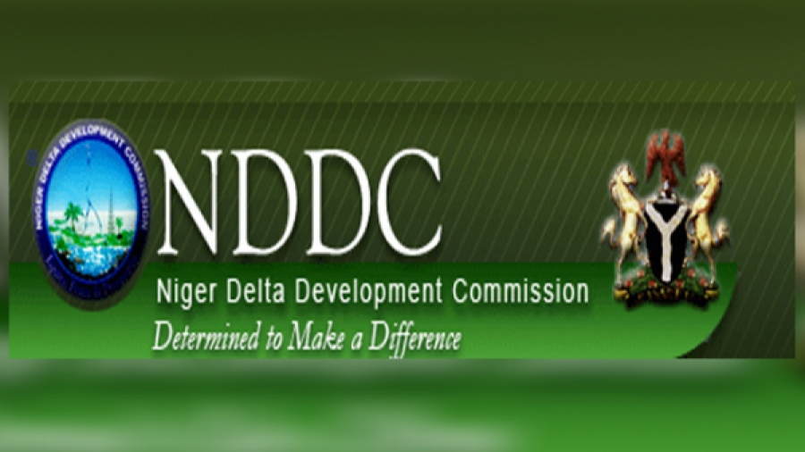Activist says politicians interference is the reason for poor management in the NDDC