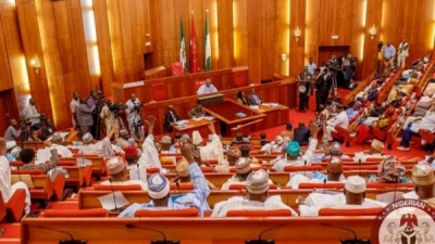 Senate passes medium term expenditure framework 2020
